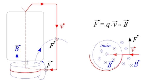 Esquema del motor, con las direcciones del campo magnético, de la corriente (se mueven las cargas negativas) y de la fuerza. A la derecha se muestra una vista superior suponiendo que la pila es transparente. Los círculos con un punto en el centro indican que el sentido de los vectores es hacia fuera  del papel, y con una cruz indican que el sentido es hacia dentro del papel.